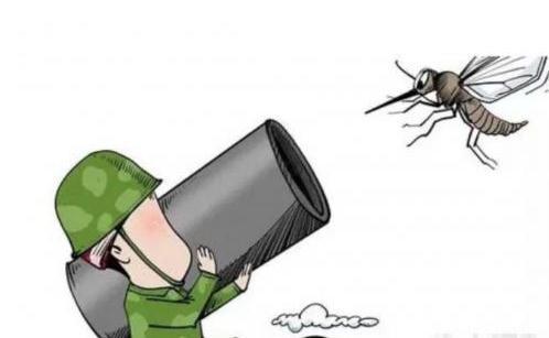 高射炮打蚊子歇后语下一句是什么图片